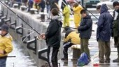 vista previa del artículo «Día Infantil del Mar»