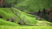 vista previa del artículo Descubre los encantos de Cantabria