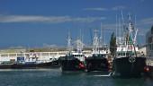vista previa del artículo Santoña, destino clásico en Cantabria