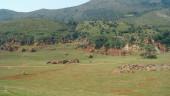 vista previa del artículo Cantabria presente en la Feria del Turismo de Extremadura