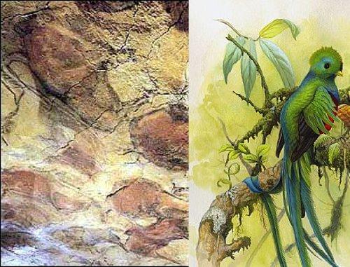 Foto de un Quetzal unido a la Cueva de Altamira.