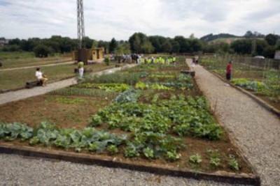Una ayuda ecológica y compañía para los mayores de Cantabria