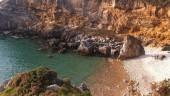 vista previa del artículo Viaje primaveral para conocer Cantabria
